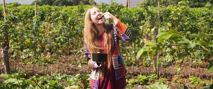Les bienfaits du jardinage sur la santé